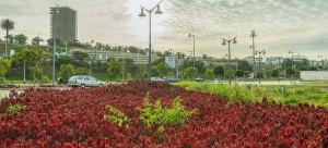 Espaces verts (Quai de Rabat)